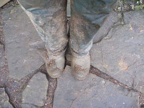 Feet 5
