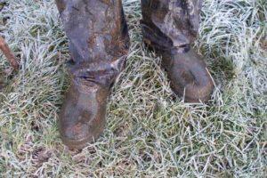 Feet meet thumbnail