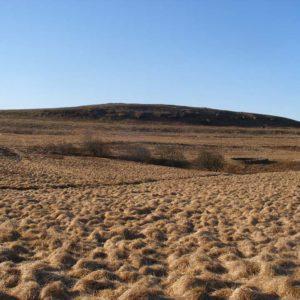 Varc landscape 3